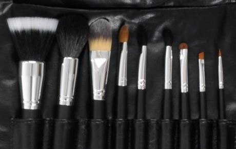 10 piece professional makeup brush set by beauty-boxes.com